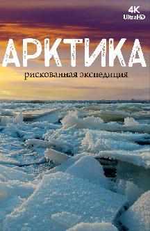 Смотреть [4K] Арктика. Рискованная экспедиция бесплатно