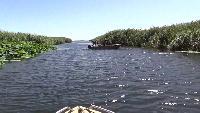 Alexander Kondrashov Все видео Подводная охота на раков.