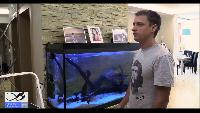 Alexander Kondrashov Все видео Советы по содержанию и обустройству аквариума.