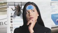 Инфомания 1 сезон 75 выпуск