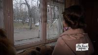 На всех парах Сезон 1 Серия 5