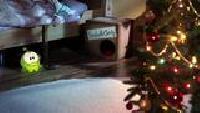 Приключения Ам Няма Сезон-1 Рождество