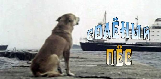 Смотреть Соленый пес бесплатно