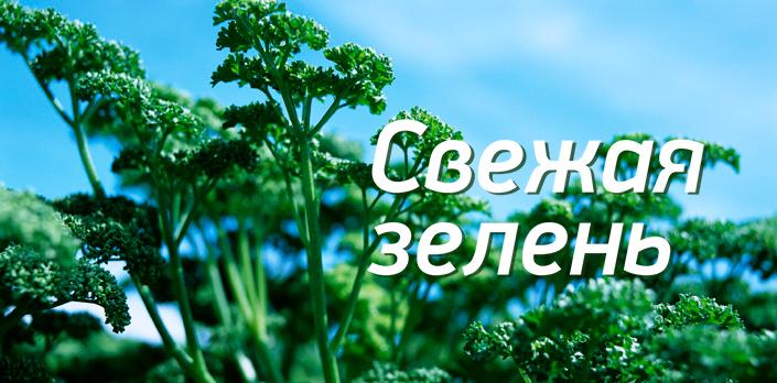 Смотреть Свежая зелень бесплатно