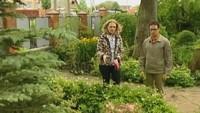 Дачные истории 1 сезон Высаживаем баклажаны в теплицу